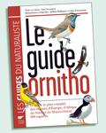 guideornitho